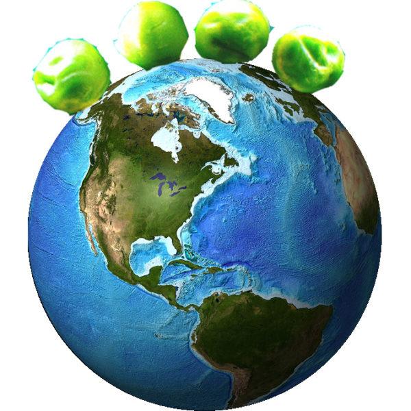 peace on earth, peas on earth