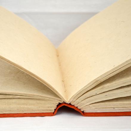Lokta Paper Journal, Stitch Bind, Medium Detail