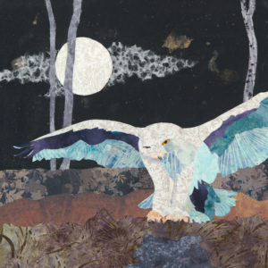Night Owl Collage Sq