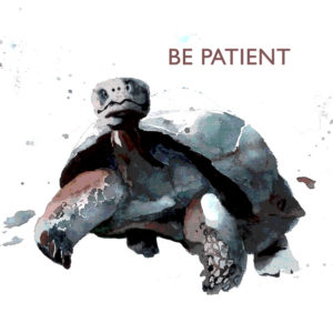 tortoise BE PATIENT tile trivet